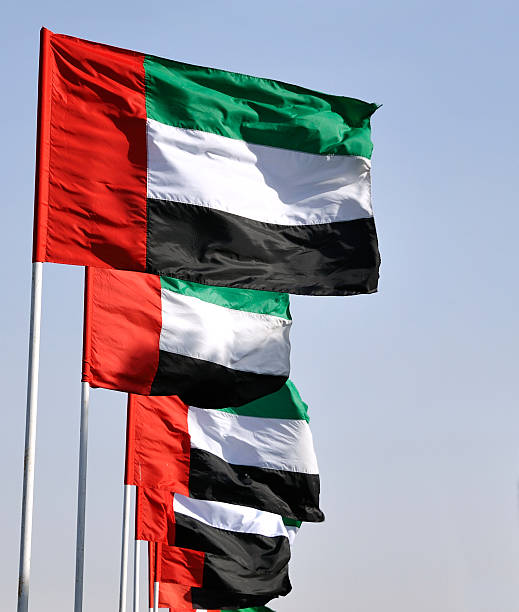 flags of the united arab emirates - uae flag stok fotoğraflar ve resimler