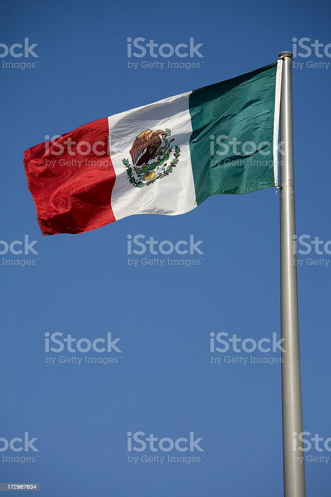 Flags of the World, Mexico National Flag royalty-free stock photo