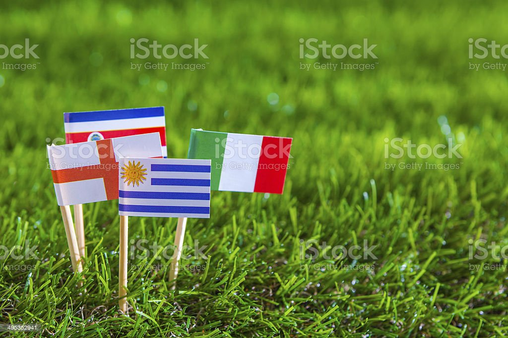 Flags on grass stock photo