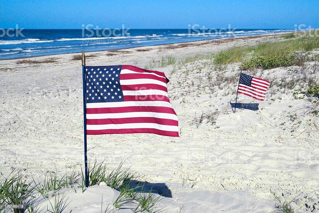 Flags on the Beach stock photo