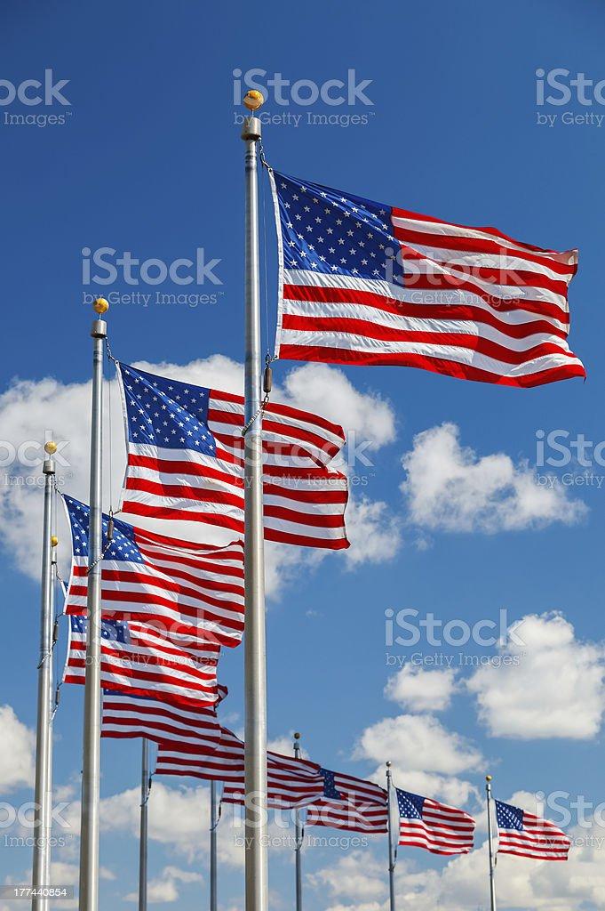 Drapeaux des États-Unis - Photo