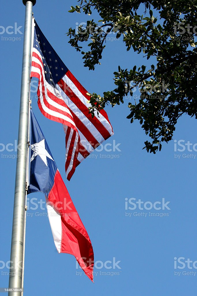 Flags - USA and Texas royalty-free stock photo