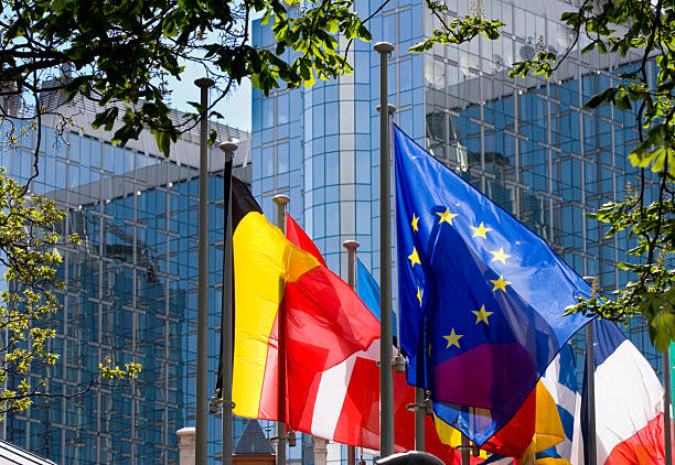 "Flags with European Parliament in Brussels ""Blue/yellow European flag, among others,fluttering in front of the European Parliament building in Brussels."" berlaymont stock pictures, royalty-free photos & images"