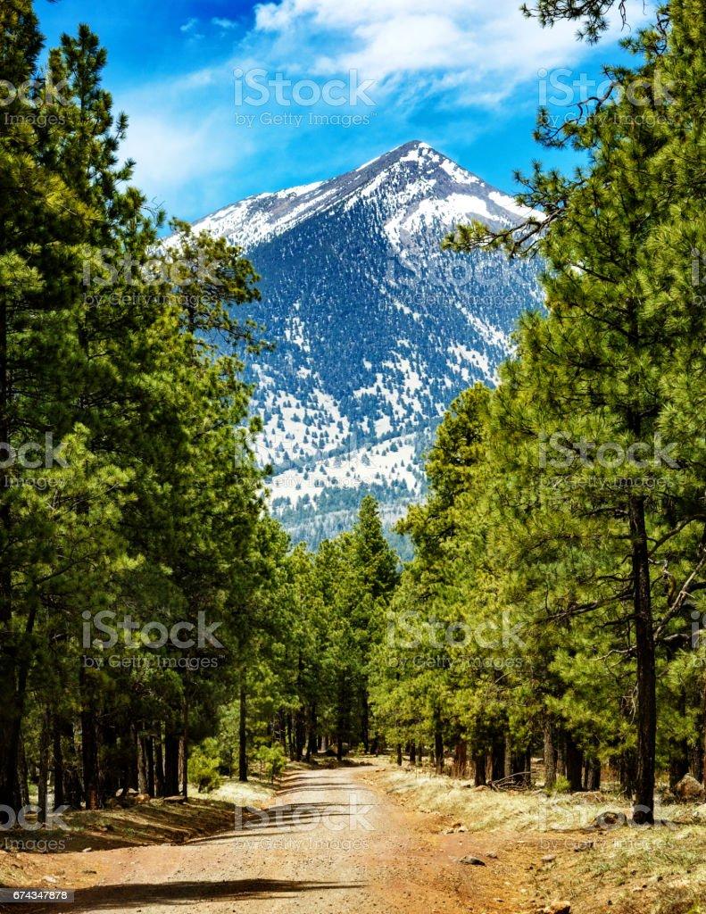 Flagstaff Arizona Road to Mountains stock photo