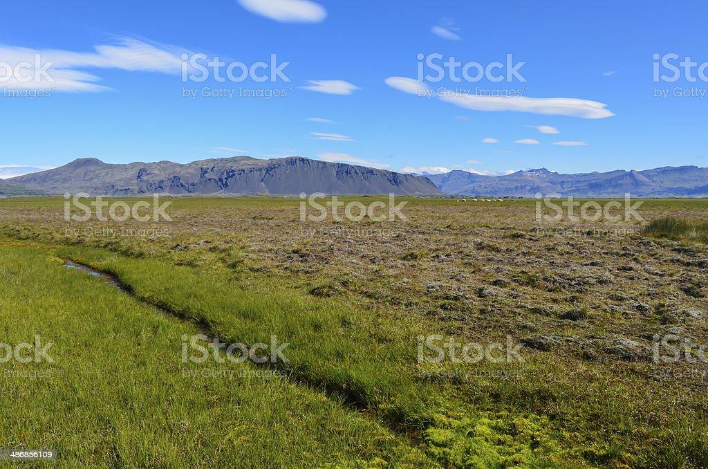 Fláajökull glacier stock photo