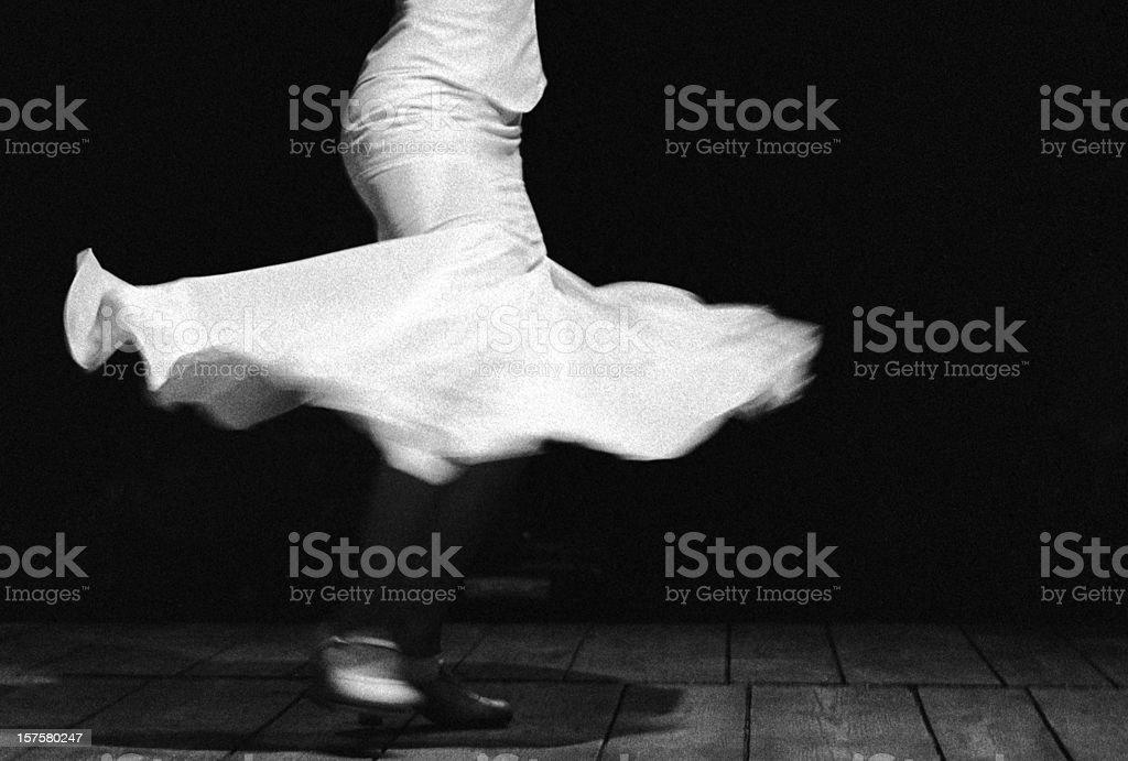Flamenco flower royalty-free stock photo