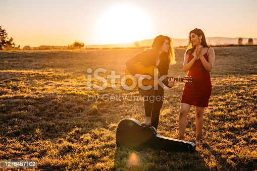 Young beautiful female flamenco singer and male guitarist on meadow enjoying in music.