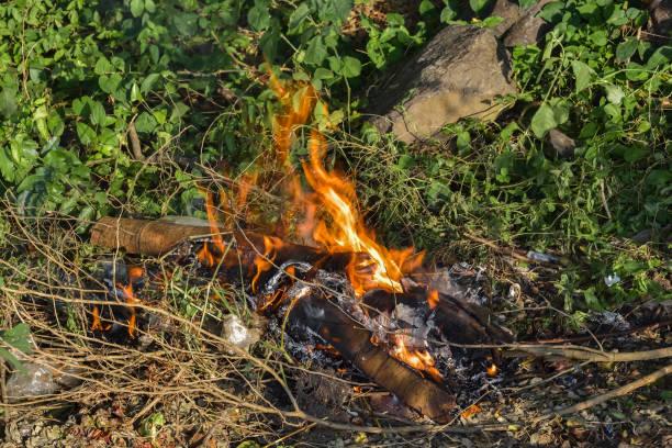 flamme, legte ein feuer - disaster design stock-fotos und bilder
