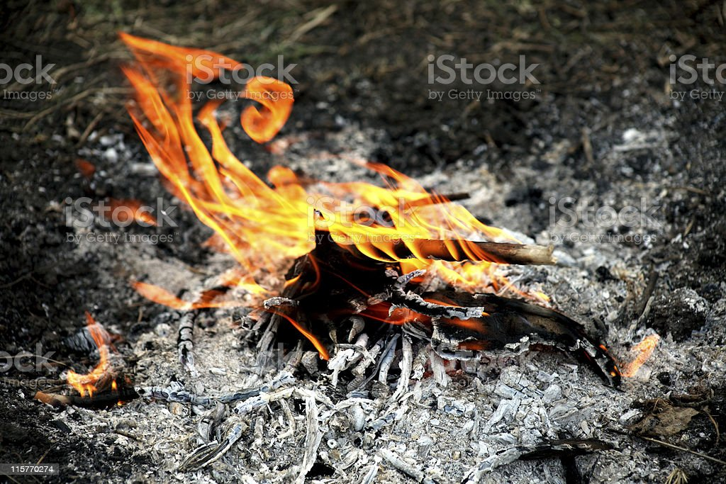 Flames fire royalty-free stock photo
