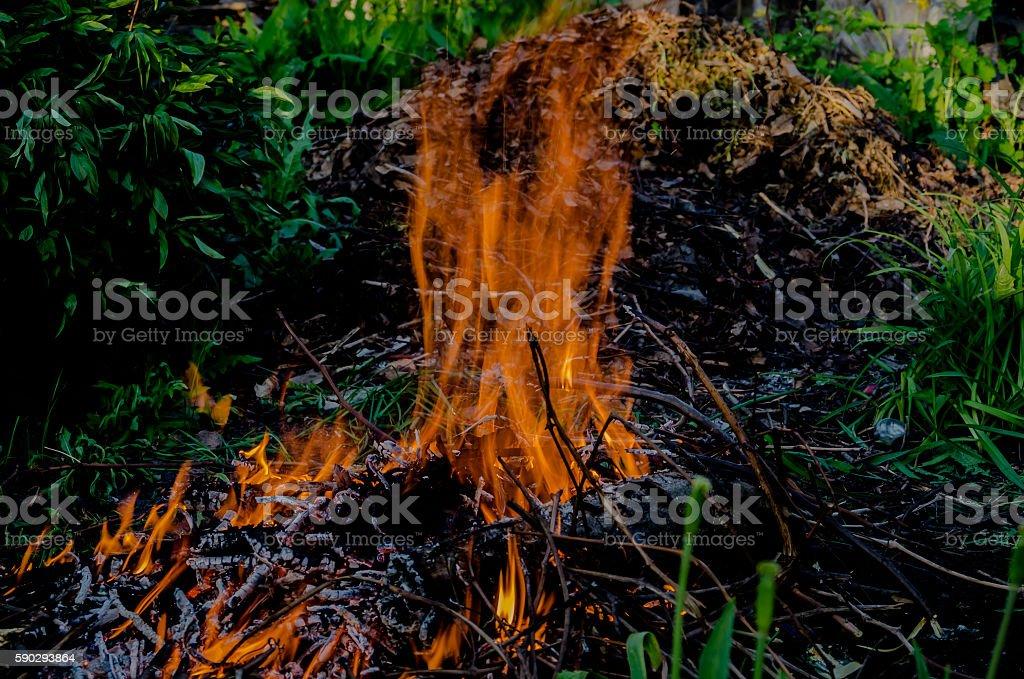 Flames fire royaltyfri bildbanksbilder