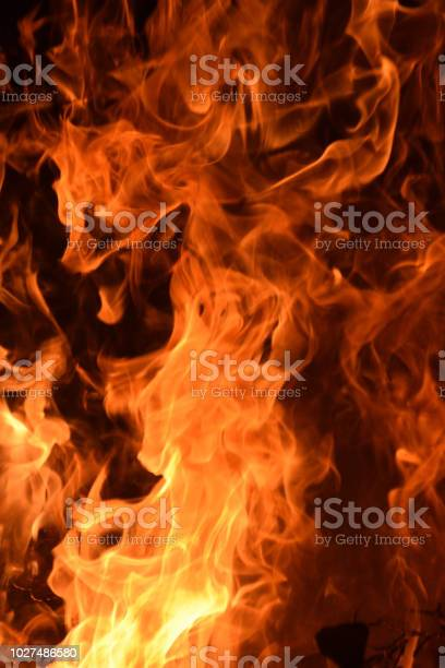 Photo of Flames Leaping into the Black of Night