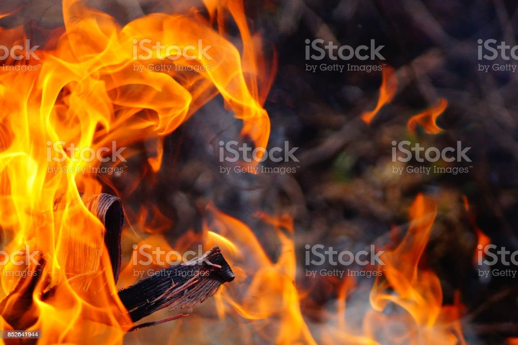 Flames of Fire stock photo