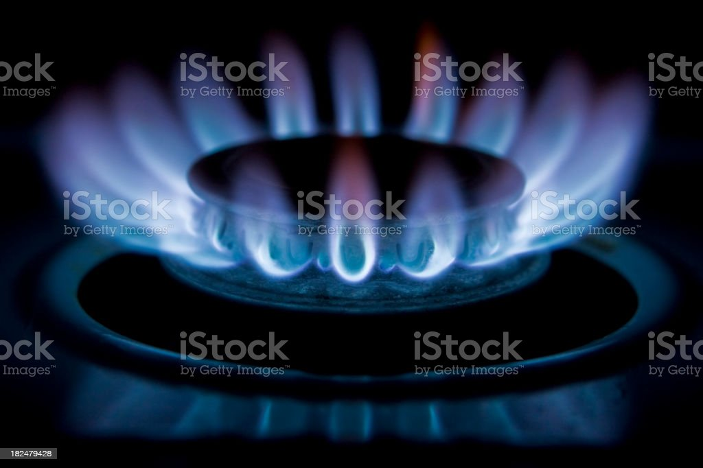 Flames of gas stove burner on high stock photo