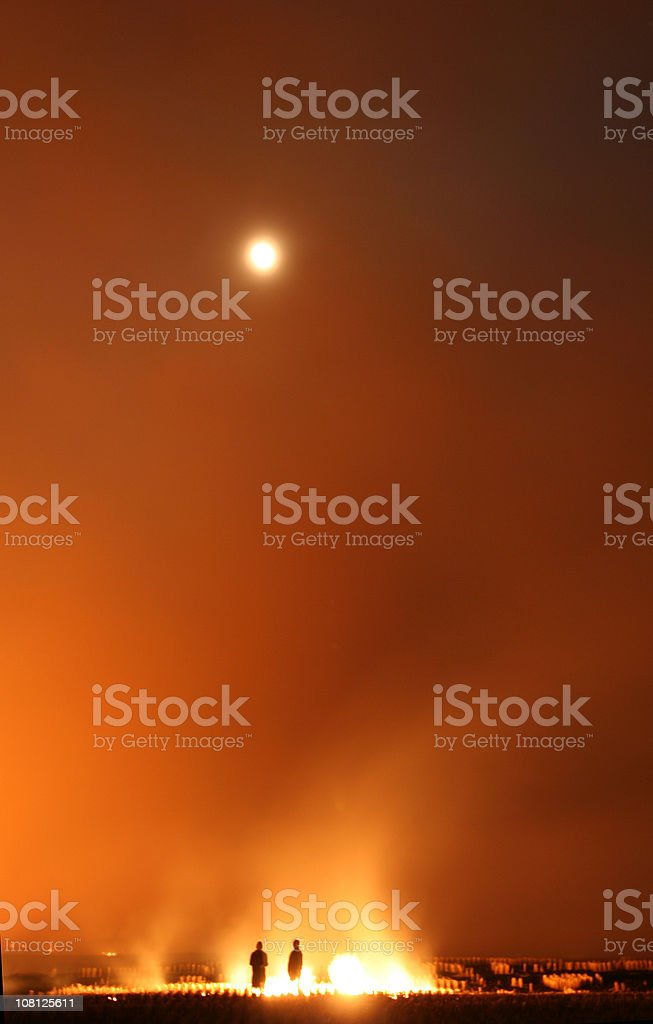 Flaming Flax Field royalty-free stock photo