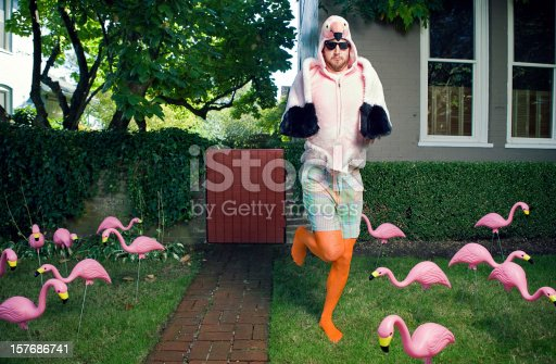 A bearded man with sunglasses wears a flamingo bird costume in his front yard, surrounded by numerous kitsch yard decor plastic flamingos.  Horizontal with copy space.