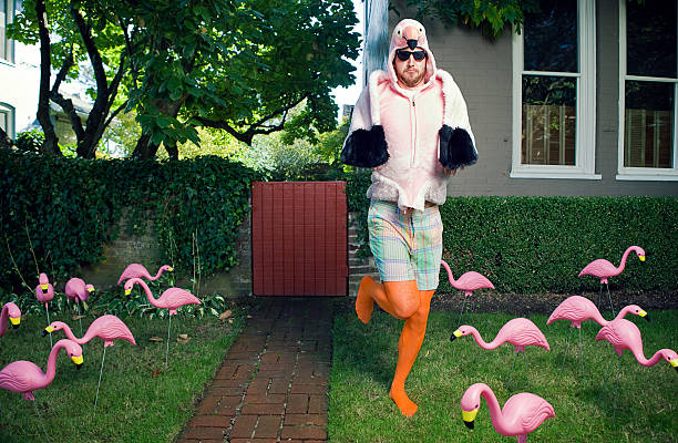 flamingo mann lawn - flippige outfits stock-fotos und bilder