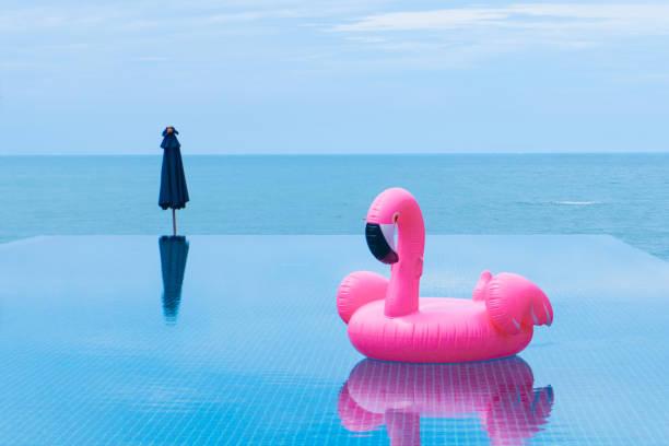 Flamingo balsa flutuando na piscina em frente ao mar e ilha - foto de acervo