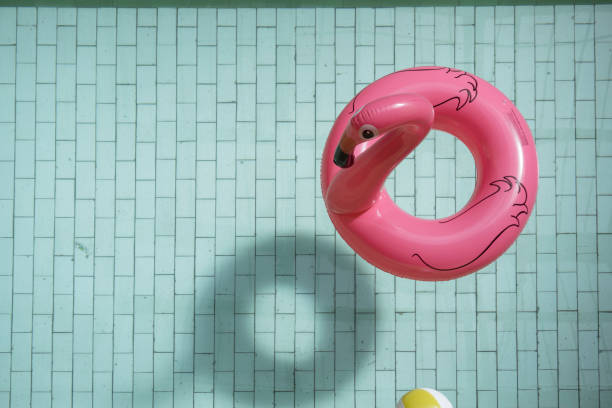 a flamingo ring - beach ball stock photos and pictures