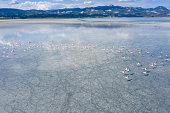 Flamingos flying on lake. Taken via drone. Yarisli Lake in Burdur, Turkey.