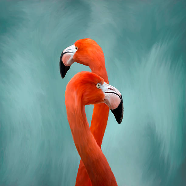 Flamingos Painting stock photo