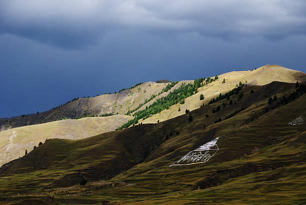 flammule is coming - ganzi tibet özerk bölgesi stok fotoğraflar ve resimler