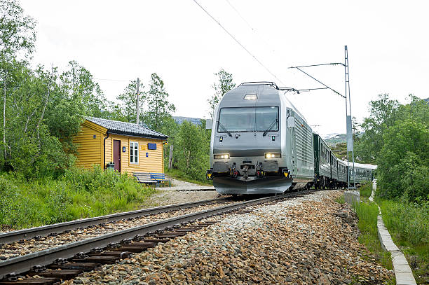 Flamsbana railway train arriving at small rural station, Norway. – Foto