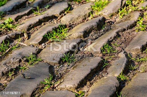 istock Flanders Cobblestone Road - Detail 1141197611