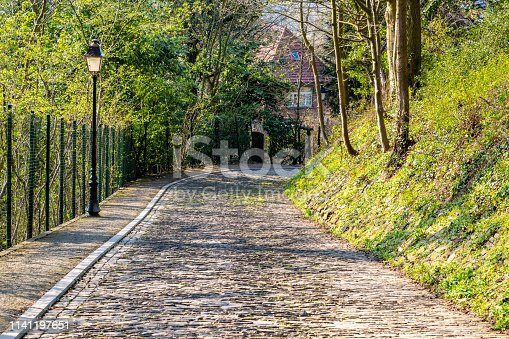 istock Flanders Cobblestone Road - Detail 1141197651