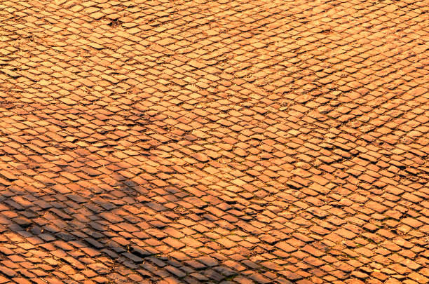 Flanders Cobblestone Road- Detail stock photo
