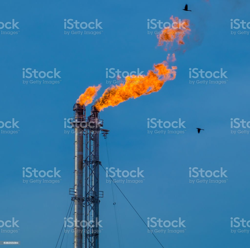 Flare stack stock photo