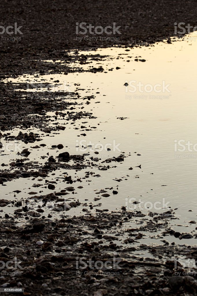 Flared margins of a lagoon at Milford Point, Connecticut. stock photo