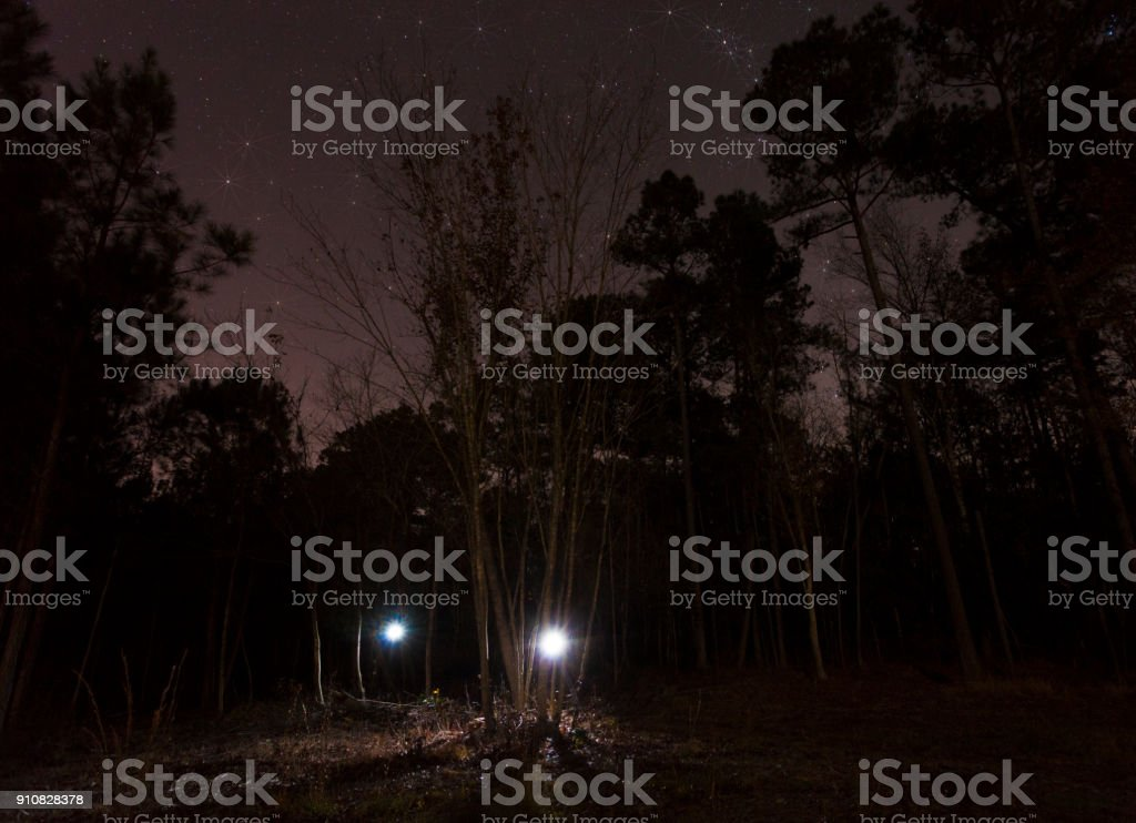 Taschenlampen nähert sich in der Nacht – Foto