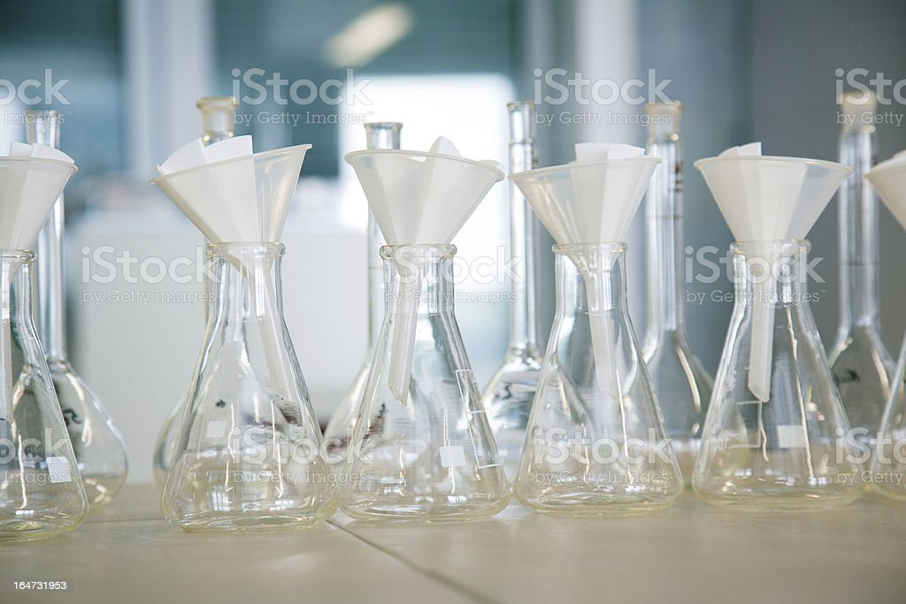 Flask in a pharmacology laboratory royalty-free stock photo