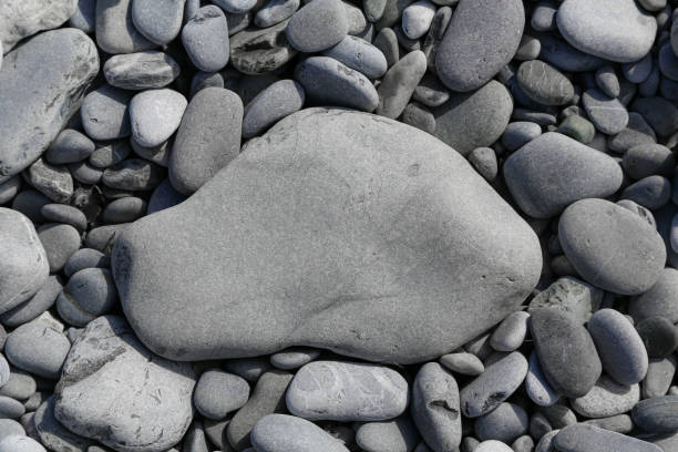 Flat grey textured stone on pebble beach with copy space stock photo