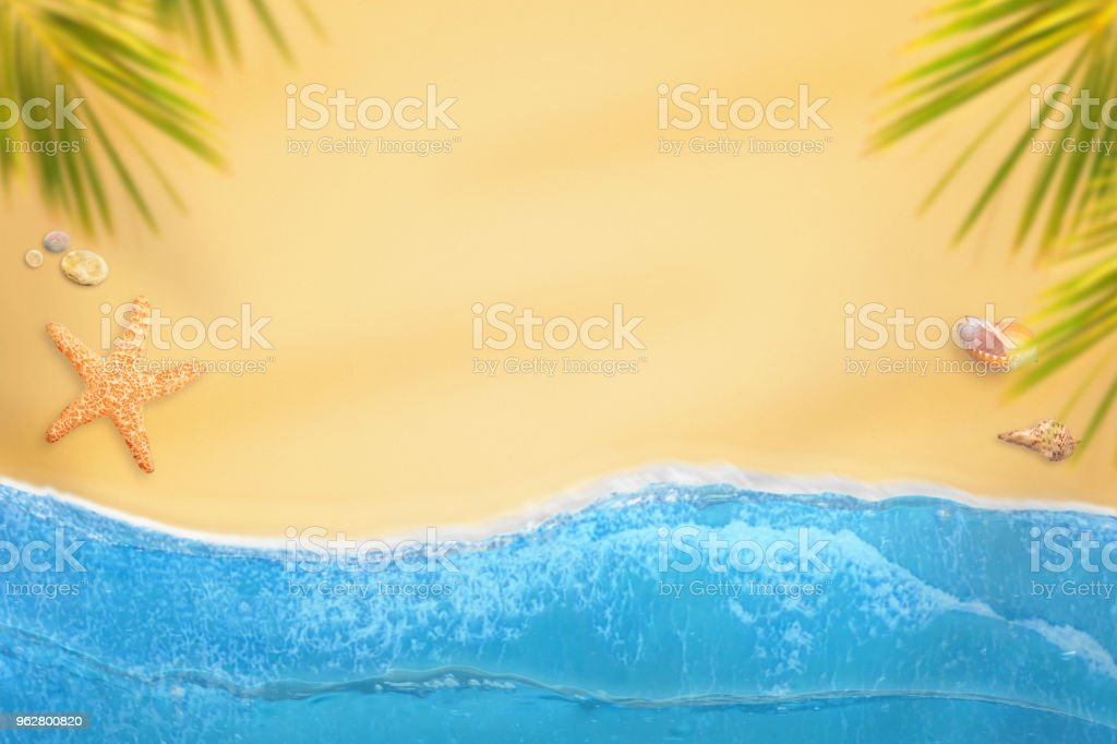 Flat lay beach with ocean waves, palms, shells and starfish. Copy space in the middle. - Foto stock royalty-free di Ambientazione esterna