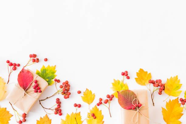 Flat lay border with colorful autumn leaves berries and gift box on a picture id1167633977?b=1&k=6&m=1167633977&s=612x612&w=0&h=e8lmpbzrw5lgavgrwoezohnzvwwnxoft3usez7unxo0=