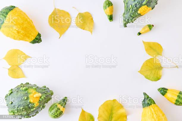 Flat lay composition with colorful autumn leaves and pumpkins on a picture id1171777194?b=1&k=6&m=1171777194&s=612x612&h=zy6ctyhzaxmjoapygxfglf1ffsly0u1vsnhtkqin2bo=