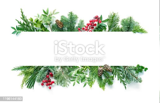 Flat lay composition with winter fir branches, cones, holly isolated on white background. Copy space for text