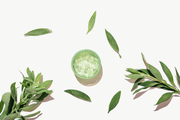 Flat lay cosmetic aloe gel next to green leaves stock photo