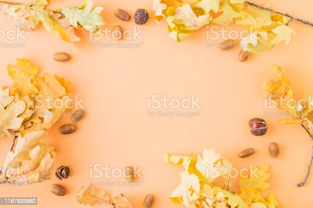 Flat lay frame with colorful autumn leaves and acorns on a color picture id1167633982?b=1&k=6&m=1167633982&s=612x612&h=qf5euisoakszrhkbrgiz2opbpcuud7mlccr 86qacpc=