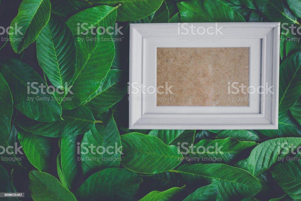 marco de la imagen plana laica de la naturaleza - Foto de stock de A la moda libre de derechos