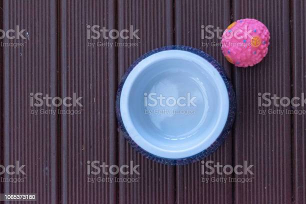 Flat lay image of a dog bowl and pink dog ball picture id1065373180?b=1&k=6&m=1065373180&s=612x612&h=vnlok0fahyqyil7htn53fzldl3duytrrovsyyhnzjvk=