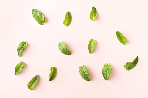 flat lay of fresh green mint leaves on pink background - przybranie zdjęcia i obrazy z banku zdjęć