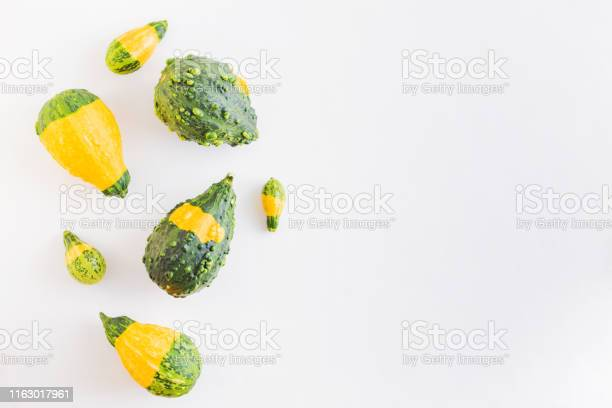 Flat lay pattern with pumpkins on a white background picture id1163017961?b=1&k=6&m=1163017961&s=612x612&h=tfmetjbqt0f6vou8hhj9dhtyln4af4lahlmifctgili=