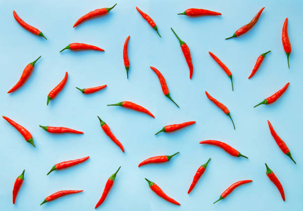 Flat lay red chili peppers pattern on blue background stock photo