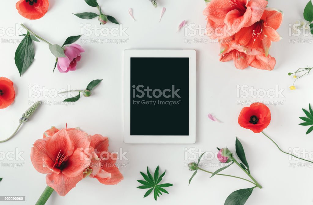 Flat lay tablet computer with blank screen on white background with wildflowers, poppy, amaryllis, peonies, top view zbiór zdjęć royalty-free