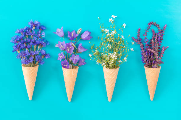 Flat lay, top view floral background. stock photo