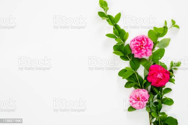 Flat lay top view mock up floral composition with pink rose flowers picture id1159371990?b=1&k=6&m=1159371990&s=612x612&h=fm5qvnshxu3mxbqzrrnodymywxjmwdfzrgshho44fom=