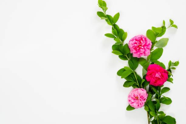 Flat lay top view mock up floral composition with pink rose flowers picture id1159371990?b=1&k=6&m=1159371990&s=612x612&w=0&h=h1r9seqmtivuepz015hcrygxclztdjix0ndwwfoxu90=