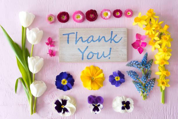 Flache Lay mit Frühling Blume Blüten, Zeichen, Text Danke – Foto